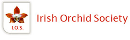 Irish Orchid Society